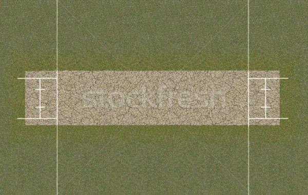 Cricket Pitch Top View Stock photo © albund