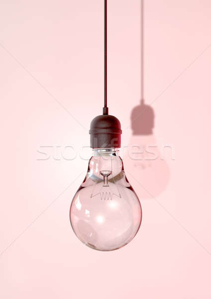 Hanging Light Bulb And Fitting Stock photo © albund