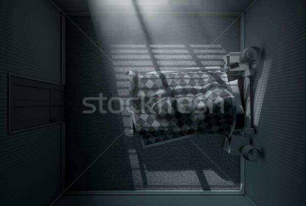 Moonlight Sleep In Stock photo © albund