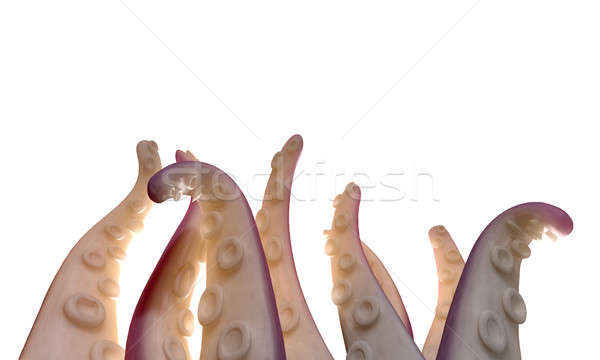 Monster Tentacles isolated Stock photo © albund