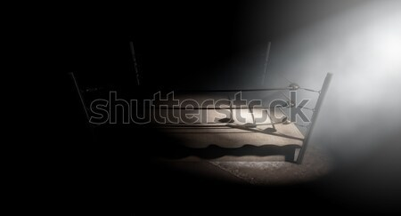 Vintage Boxing Ring Spotlit Corner Stock photo © albund