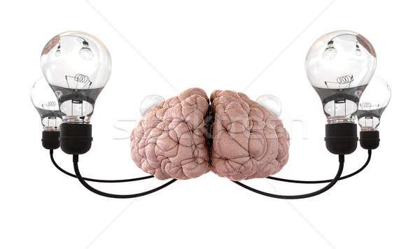 Hersenen gloeilamp verbeelding witte regelmatig zes Stockfoto © albund