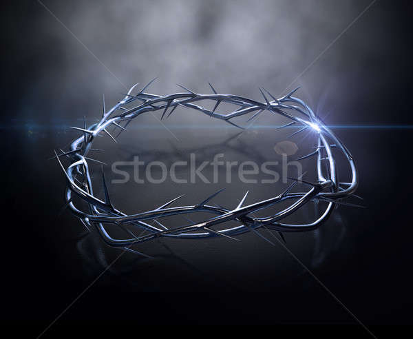 Crown Of Thorns Gold Casting Stock photo © albund