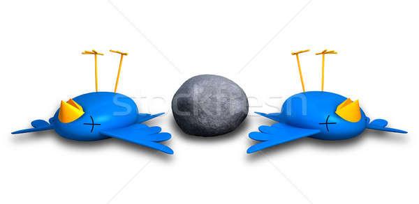 Doden twee vogels een steen cartoon Stockfoto © albund