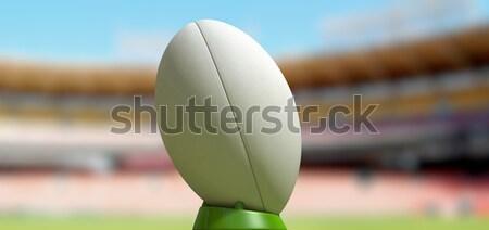 Rugby Ball In A Stadium Daytime Stock photo © albund