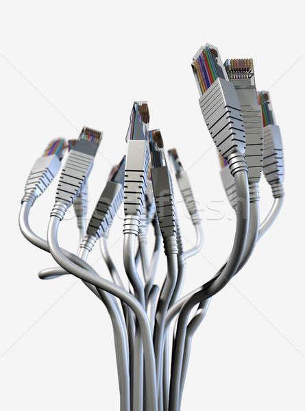 Ethernet streszczenie bukiet kolekcja wraz na zewnątrz Zdjęcia stock © albund