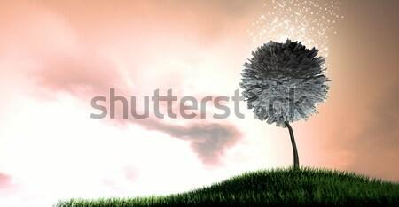 Денежное дерево европейский евро стилизованный фантазий мифический Сток-фото © albund