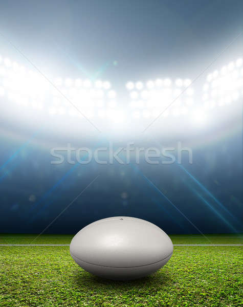 Rugby Stadium And Ball Stock photo © albund