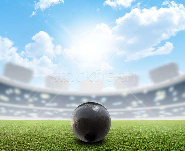 Labda stadion zöld tőzeg általános sportok Stock fotó © albund