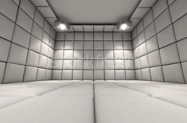 Padded Cell Stock photo © albund