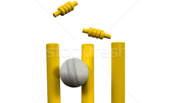 крикет мяча ночь белый кожа желтый Сток-фото © albund