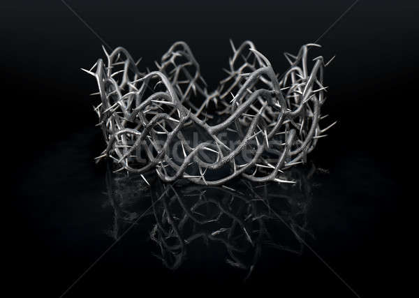 Silver Crown Of Thorns Stock photo © albund
