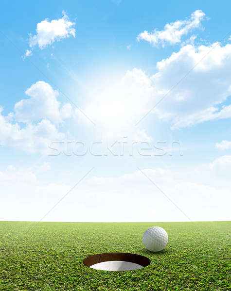 Blue Sky And Putting Green Stock photo © albund