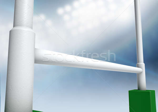 Rugby Posts Stadium Night Stock photo © albund