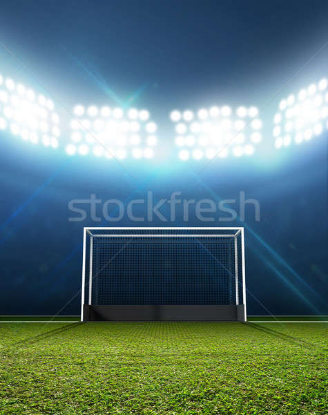 Sports Stadium And Hockey Goals Stock photo © albund