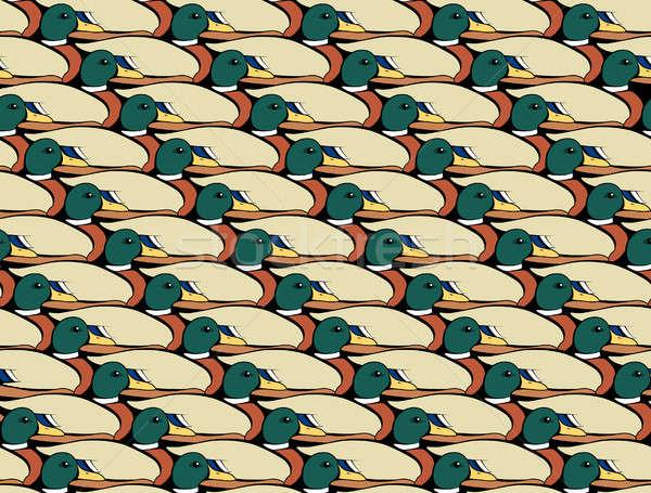 Mallard Duck Collage Stock photo © albund