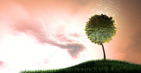 Foto stock: Australiano · dólar · estilizado · árvore