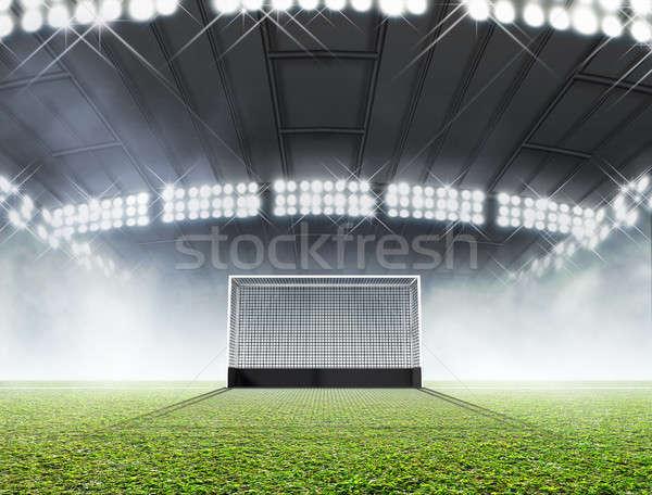Spor stadyum hokey çim yeşil ot Stok fotoğraf © albund