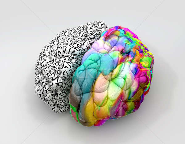 Stock photo: Left And Right Brain Concept Perspective