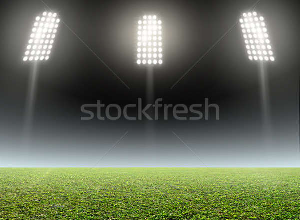 Stadium Outdoor Floodlit Stock photo © albund
