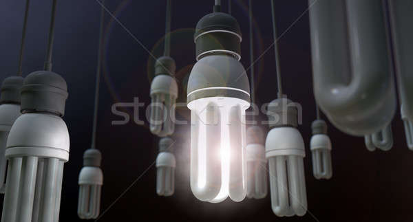 Leadership Hanging Lightbulb Stock photo © albund