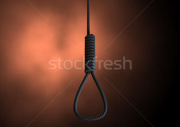 Hangmans Noose Rope Stock photo © albund