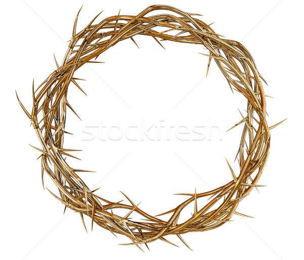 Golden Crown Of Thorns Stock photo © albund