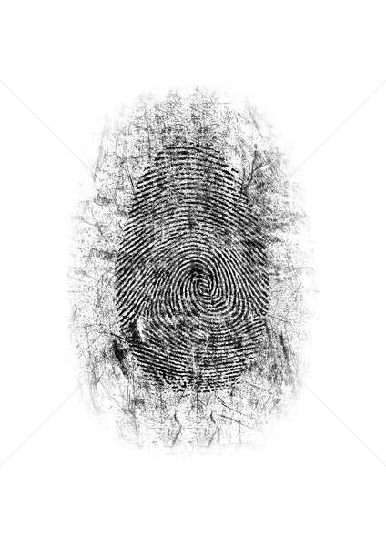 Dusted Fingerprint Stock photo © albund