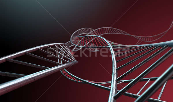 Spiral Genetics Strands Stock photo © albund
