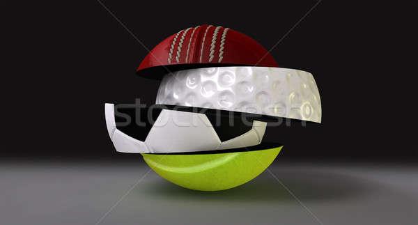 Segmented Fragmented Round Sports Ball Stock photo © albund