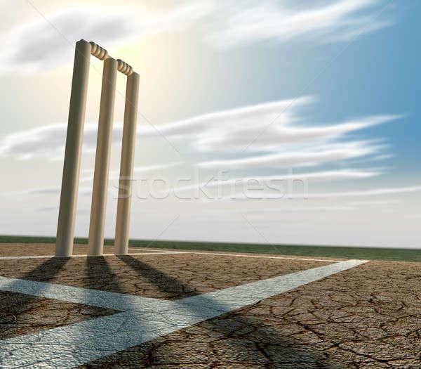 クリケット ピッチ 観点 セット アップ ひびの入った ストックフォト © albund