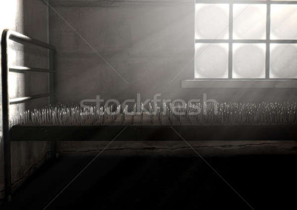 Bed Of Nails In A Room Stock photo © albund