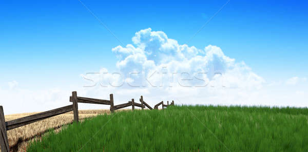 Green Pastures With Fence Stock photo © albund