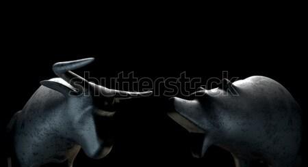 Bull Versus Bear Stock photo © albund
