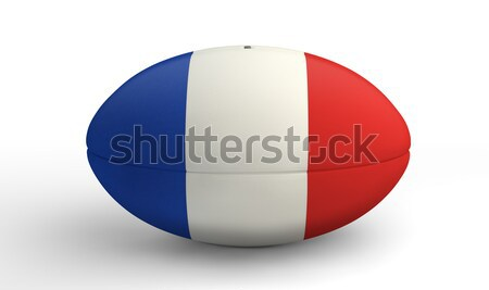 French Rugby Ball On White Stock photo © albund
