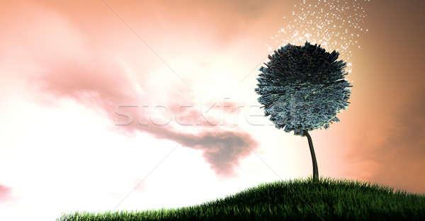 Foto stock: Libra · estilizado · árvore · folhas