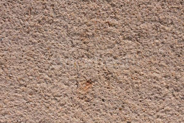 Doku duvar çatlamak can kullanılmış kaya Stok fotoğraf © alekleks