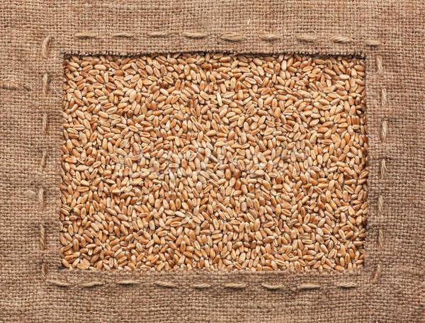 Frame made of burlap with wheat Stock photo © alekleks