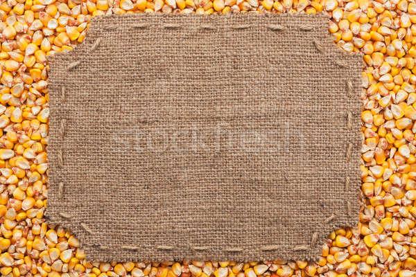 кадр брезент Швы место текста кукурузы Сток-фото © alekleks