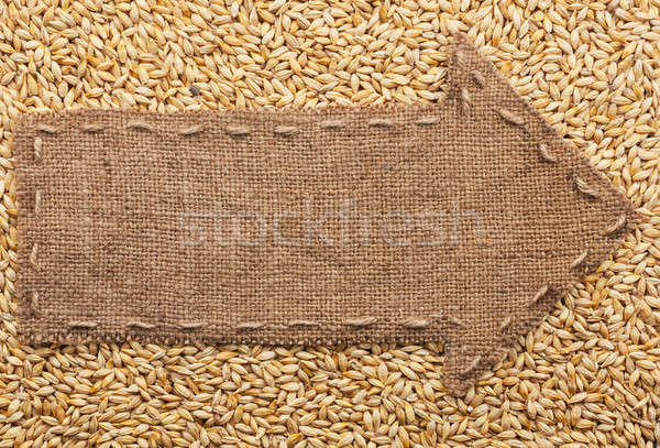Pointer of burlap with place for your text, lying on a barley  Stock photo © alekleks