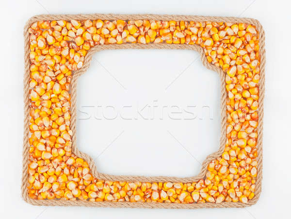 Two frames of the rope with corn  grain on a white background Stock photo © alekleks