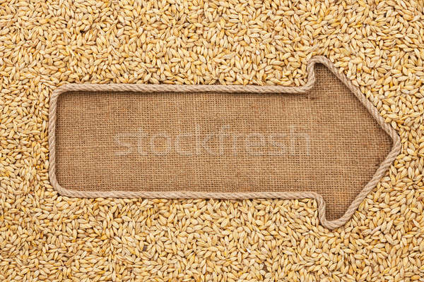 Pointer made from rope with grain barley  lying on sackcloth Stock photo © alekleks