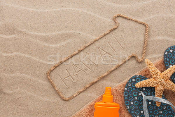 Hawaii pointer and beach accessories lying on the sand Stock photo © alekleks