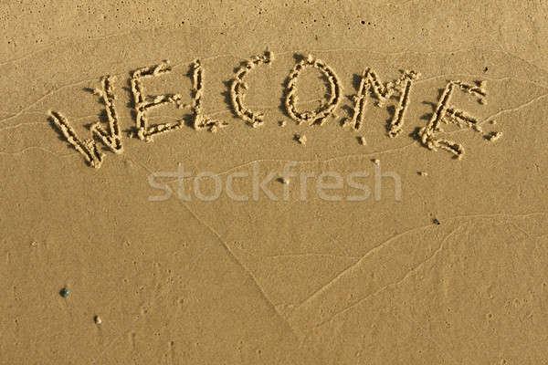 Foto stock: Palavra · bem-vindo · escrito · areia · praia · textura