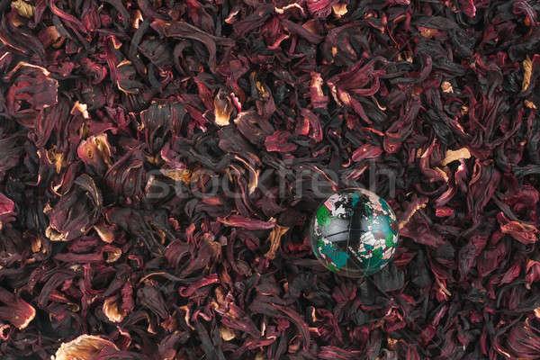 üveg földgömb hibiszkusz virág rózsa egészség Stock fotó © alekleks
