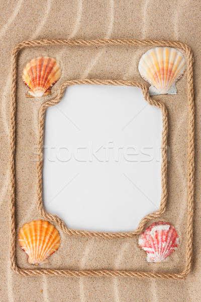 Dois belo quadro corda mar conchas Foto stock © alekleks