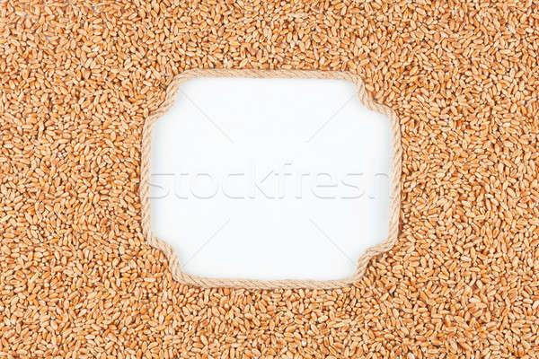 Keret kötél búzaszemek fehér hely szöveg Stock fotó © alekleks
