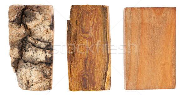 écorce bois velours isolé blanche arbre Photo stock © alekleks