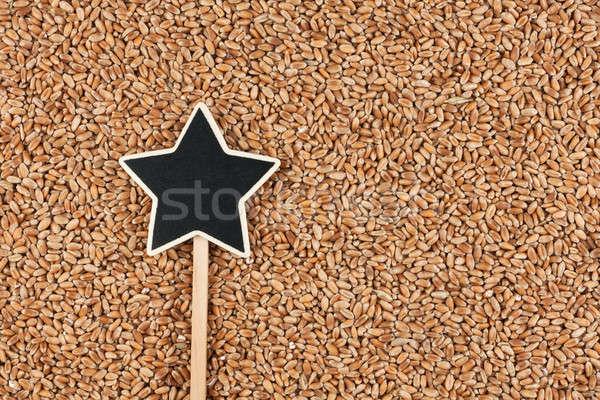 Assinar mentiras trigo espaço estrela planta Foto stock © alekleks