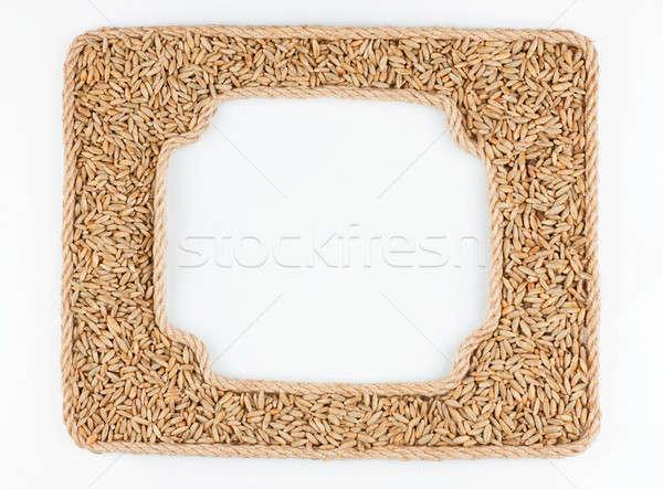 Kettő keret kötél rozs gabona fehér Stock fotó © alekleks